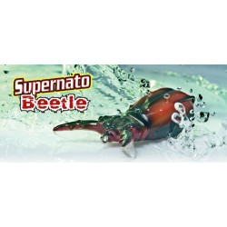 Molix Supernato Beetle